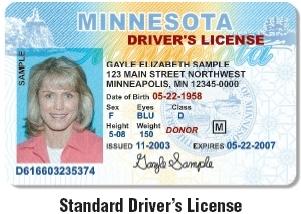 michigan enhanced drivers license